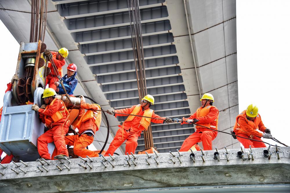 浙江省担当作为好干部丨决胜沿海大通道的建设者林立宏
